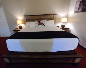 King Ranch Style Suite Photo 6